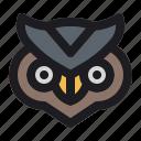 bird, halloween, night, owl