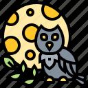 full, lunar, moon, nighttime, owl