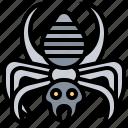arachnid, danger, poison, scary, spider icon