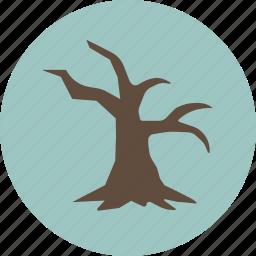dead, nature, tree icon