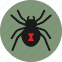black widow, bug, danger, halloween, insect, spider icon