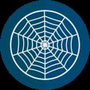 halloween, spider, web