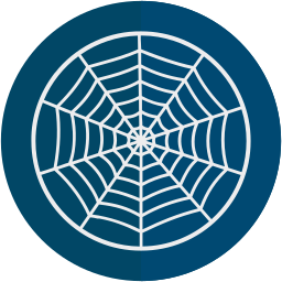 halloween, spider, web icon