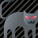 animal, black, cat, halloween, pet, scary