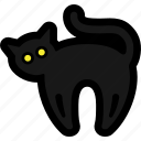 animal, black cat, cat, eyes, halloween icon