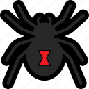 arachnid, black widow, bug, danger, halloween, insect, spider icon