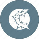 bats, halloween, moon, moonlight, night, scary, sky