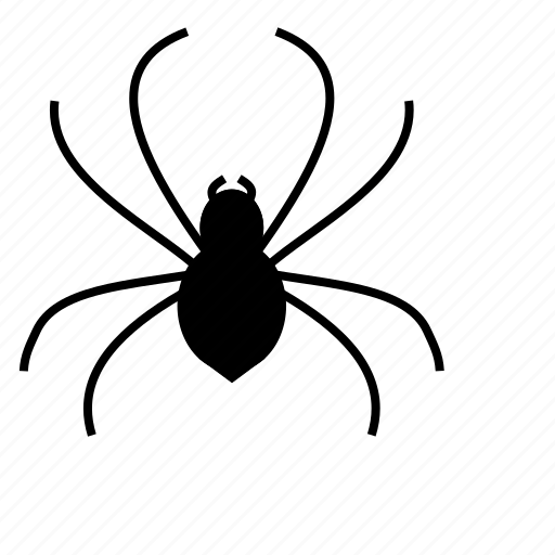 animal, cob, insect, insects, parasite, pest, spider icon