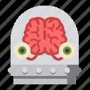 brain, halloween