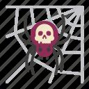 halloween, spider