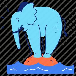animals, elephant, sea, ocean, island, balance, lonely