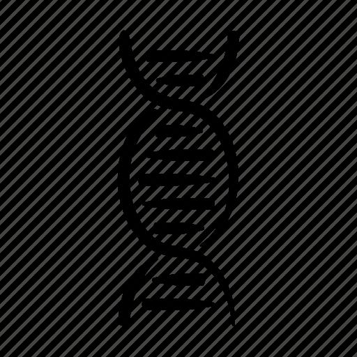 dna, double, genes, genetics, hand drawn, helix, strand icon