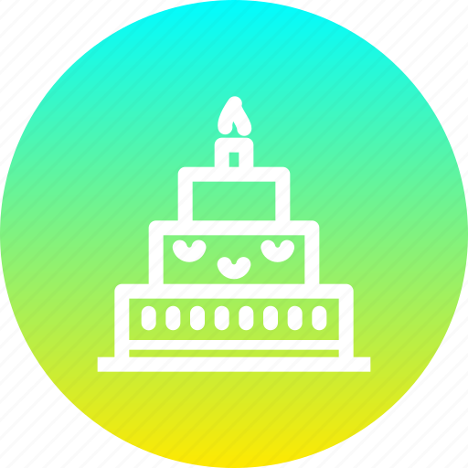 birthday cake candle celebrate celebration christmas new year icon