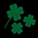 clover, quatrefoil, fortune, success, patrick, leaf, luck