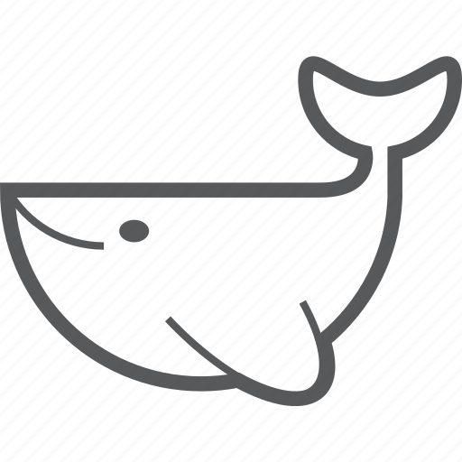 Whale, animal, fish, ocean, sea, underwater, water icon - Download on Iconfinder
