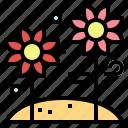 bloom, flower, nature, plant