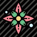 flower, hawaii, mugunghwa, plant icon
