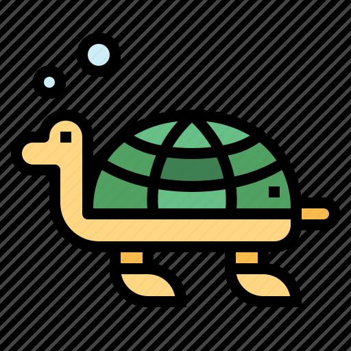 animal, life, sea, turtle, zoo icon