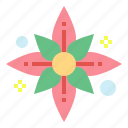 flower, hawaii, mugunghwa, plant
