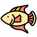 animal, fish, ocean, seafood icon