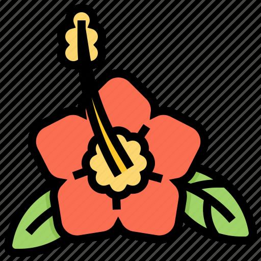 flora, flower, hawaii, mugunghwa icon