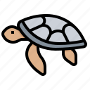 animal, hawaii, sea, turtle icon