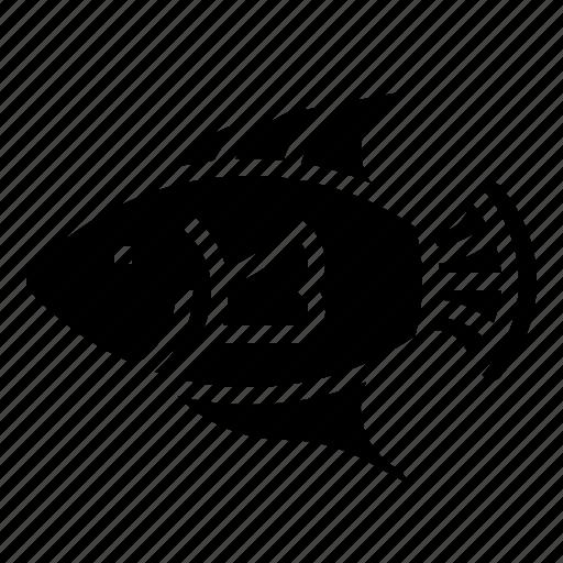 animal, fish, ocean, seafood icon