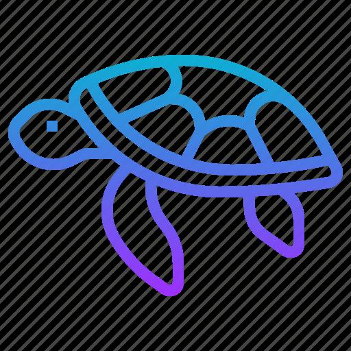 animal, hawaii, sea, turtle icon