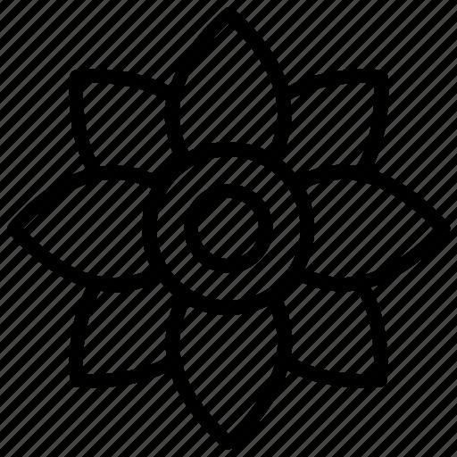 aroma, daisy, flower, hawaii flower, princess daisy icon