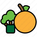 fitness, food, fruit, healthy, nutrition, organic, vegetables icon