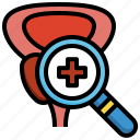 prostate, check, healthcare, medical, anatomy, organ, cancer