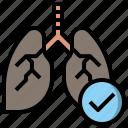 anatomy, breath, lung, lungs, organ icon