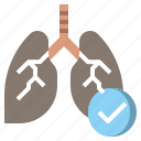 anatomy, breath, lung, lungs, organ icon