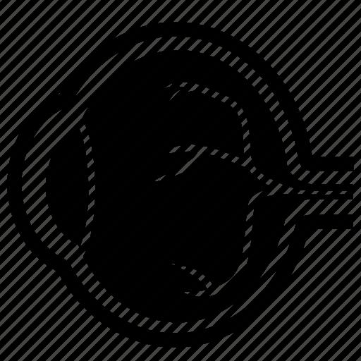eye, retina icon