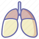 anatomy, human, lungs, medical, organ icon