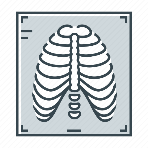Fluorography, medicine, x-ray, rib cage, ribs icon - Download on Iconfinder