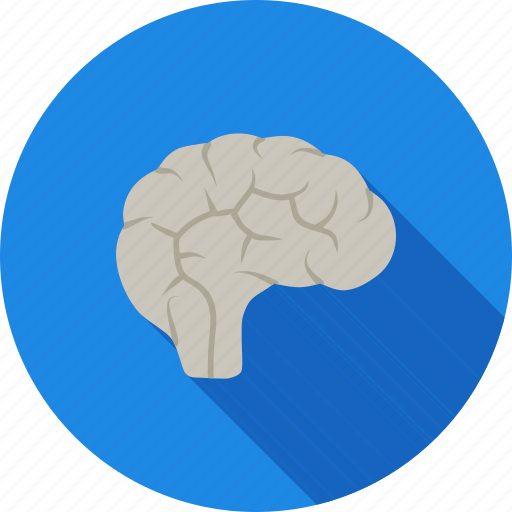 brain, human, medical, mind, neuro, neurology, neurons icon