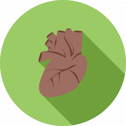 cardiac, cardiology, ecg, heart, heart beat, human organ, pulse icon