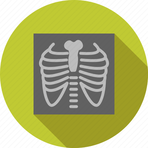bones, chest, image, lungs, medical examination, ribs, x ray icon