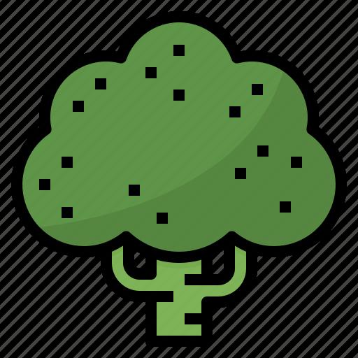 broccoli, fiber, healthy, vegetable icon