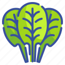 vegetable, food, organic, vegan, healthy, diet, spinach icon