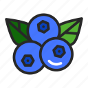berry, blueberries, food, healthy icon