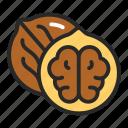 food, healthy, walnut icon