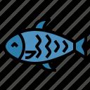 fish, salmon, steak, healthy, food, eating, animal