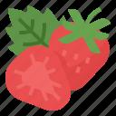 berry, healthy, strawberry, vitamin