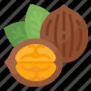 healthy, nut, nutrition, walnuts
