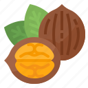 healthy, nut, nutrition, walnuts icon