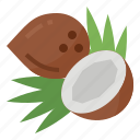 coconut, healthy, nutritious, oil icon