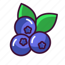 blueberries, food, fruits, healthy, sweet icon