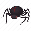 helloween, insect, latrodectus mactans, spider, widow icon